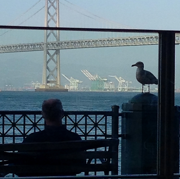Slanted Door view from table with seagull