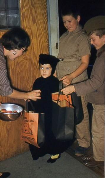 Debbie Halloween cat