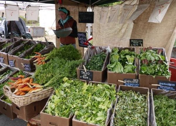 Point Reyes farmer's market