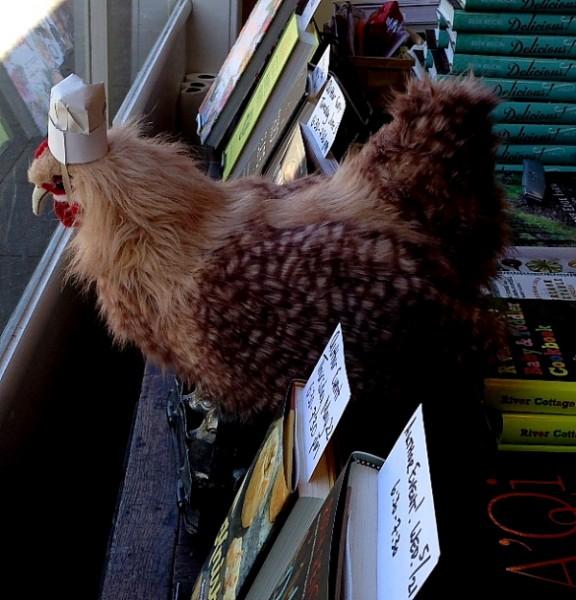 Omnivore chicken in window