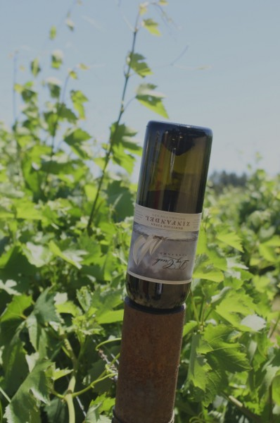 Dry Creek upside down bottle in vineyard
