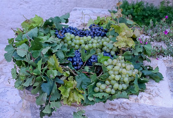 Altemura grape decoration