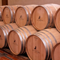 Altemura group wine barrels