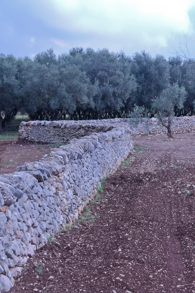 Altemura stone wall