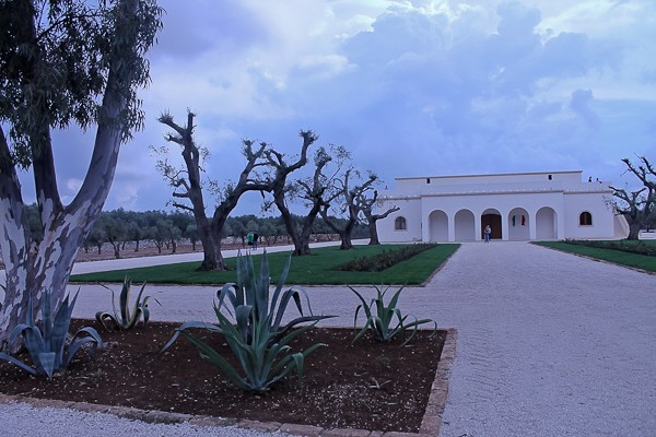 Altemura winery