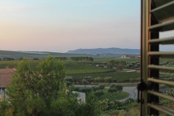 Butera window view with shutter 2