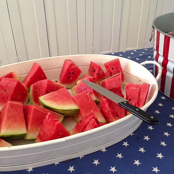 MS watermelon