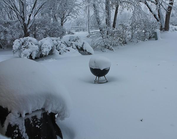 Snow on grills