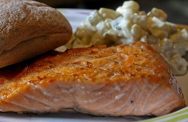 Sami tent salmon on plate