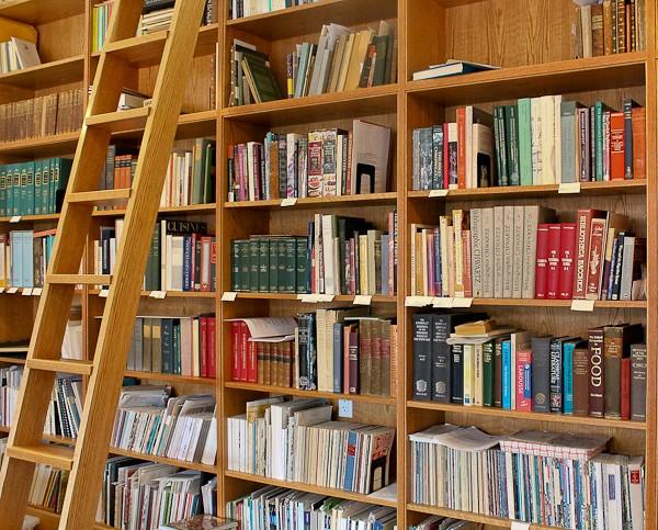 Ben book shelves with ladder