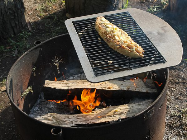 Pit cooking fish 2