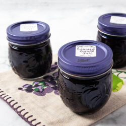 Concord Grape Jam 2